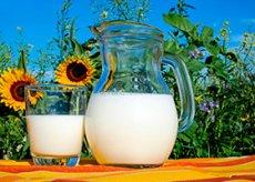 dricka mjölk gravid